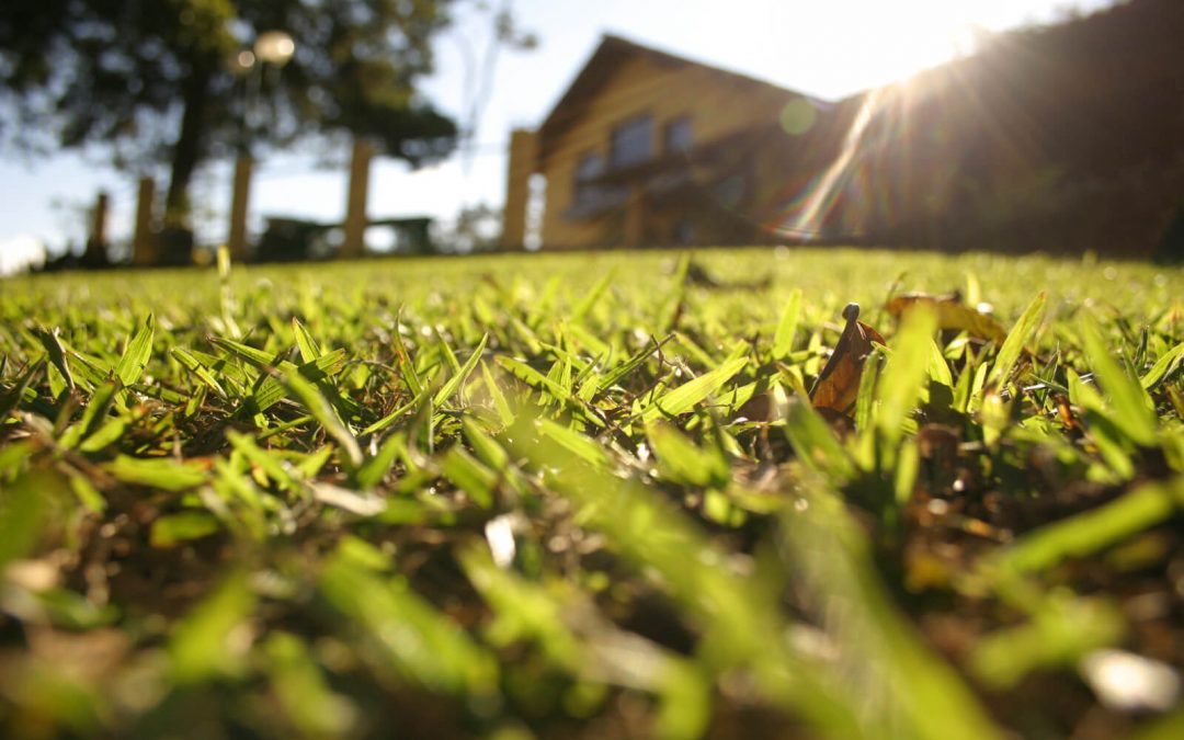 Government announces first ever garden villages